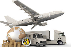 International Cargo Movers